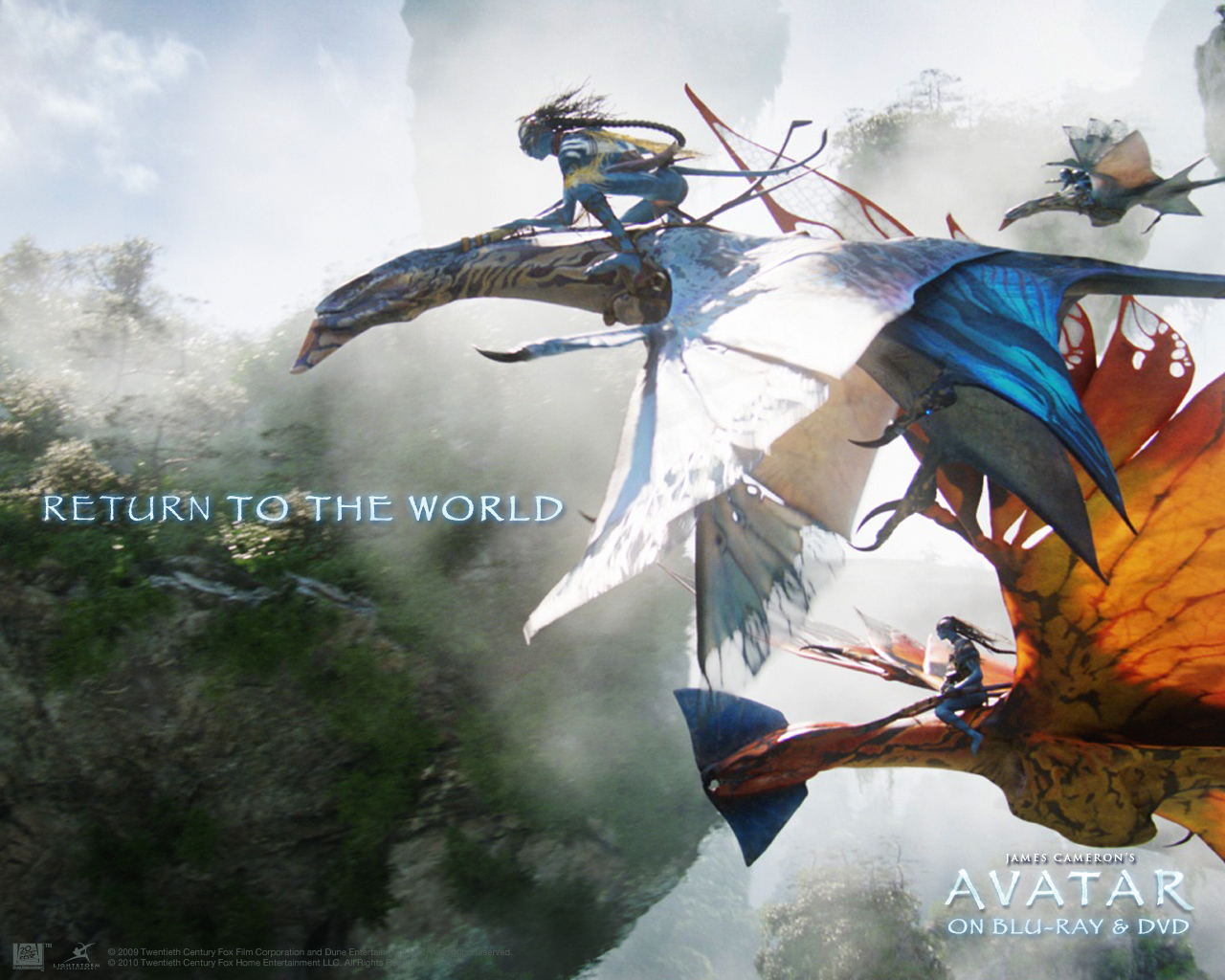 The avatar wallpaper - Leonopteryx wallpaper ...