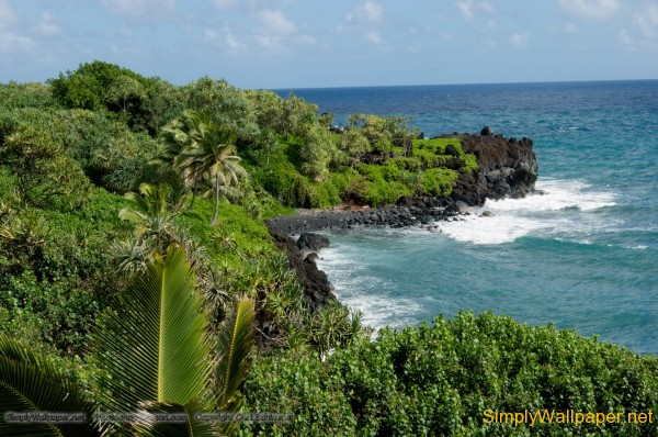 tropical shoreline, ocean surf