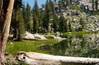 high mountain pond surrounded by pine trees