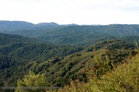 rolling hills of the santa cruz mountains