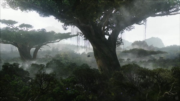 view of the rainforest on Pandora