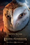 kludd the owl from legend of the guardians the owls of ga hoole wallpaper