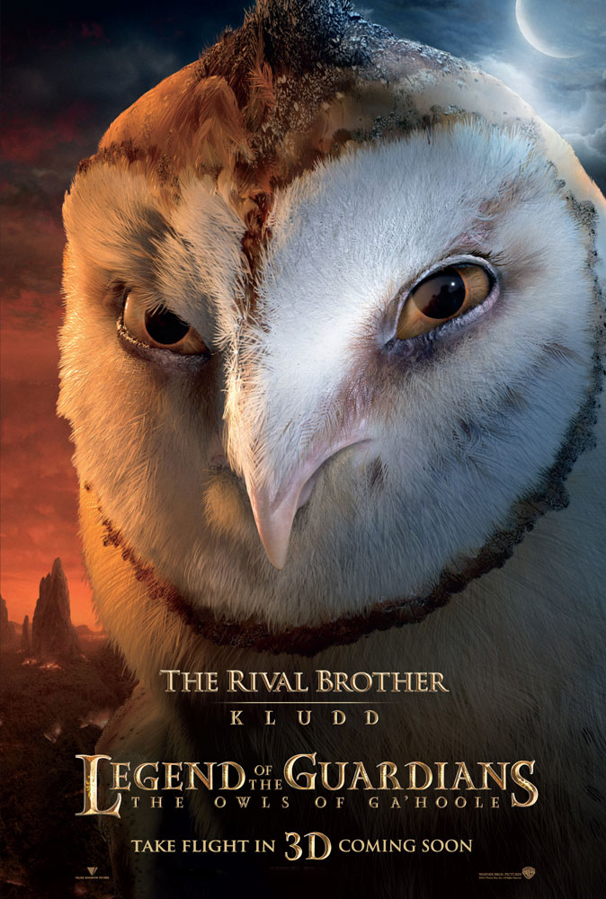 Kludd the owl from legend of the guardians the owls of ga hoole