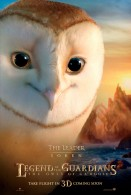 soren the owl from legend of the guardians the owls of ga hoole wallpaper
