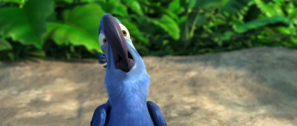 Blu the macaw in a scene from the movie Rio