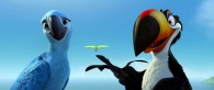 Rafael the toucan talks to Jewel the macaw in a scene from the movie Rio