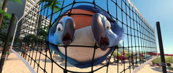 Blu and Jewel the macaws in a scene from the movie Rio