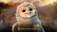 Eglantine the baby owl from Legend of the Guardians