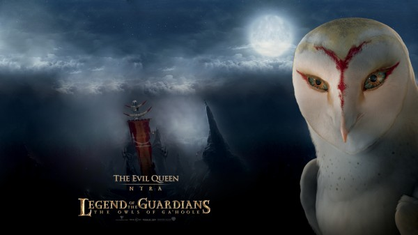 Nyra the owl from Legend of the Guardians