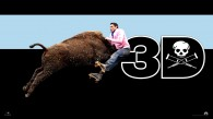 jackass 3D movie hit by a bull wallpaper