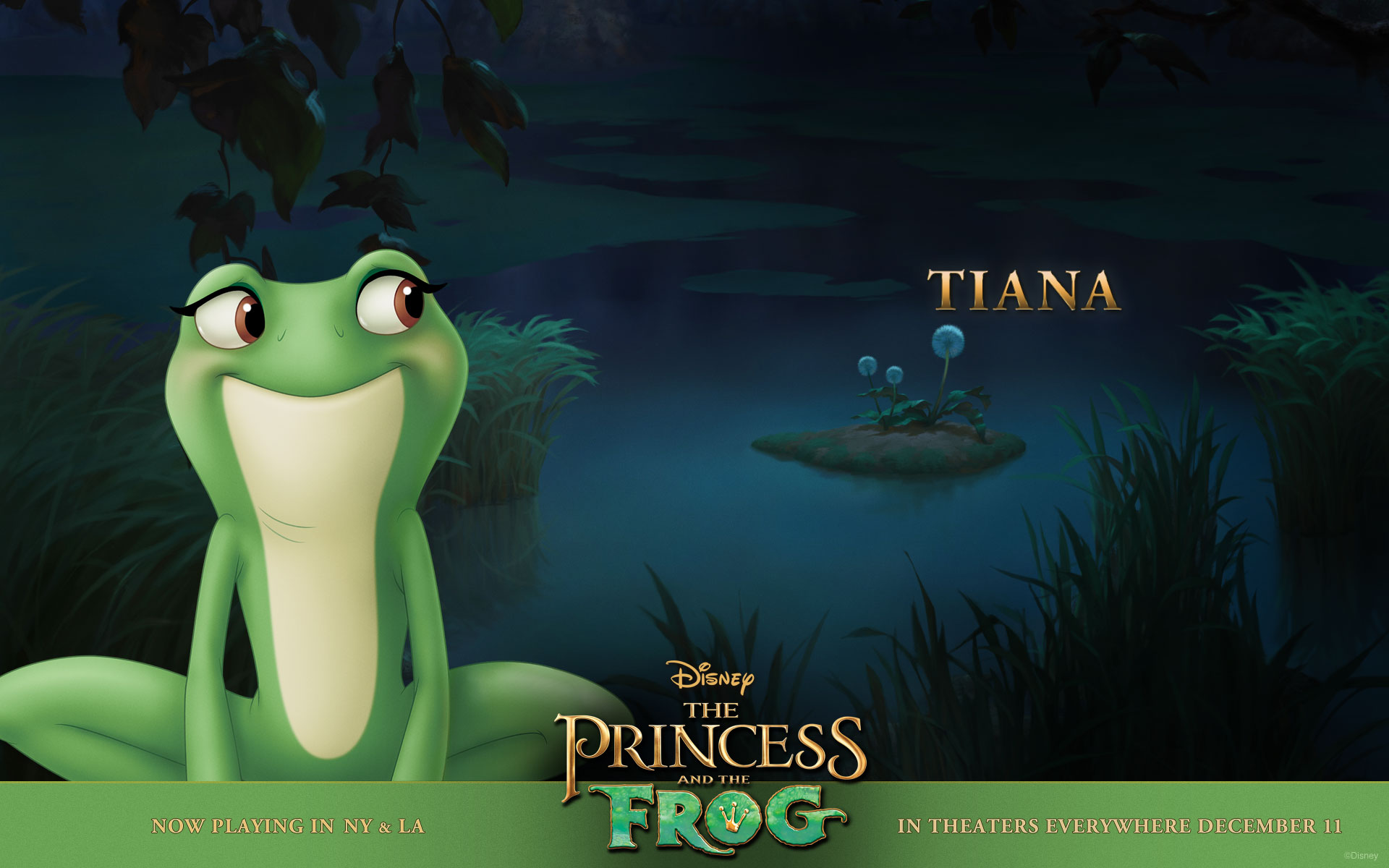 Tiana In The Bayou From Disney S Princess And The Frog Princess And The Frog Frog