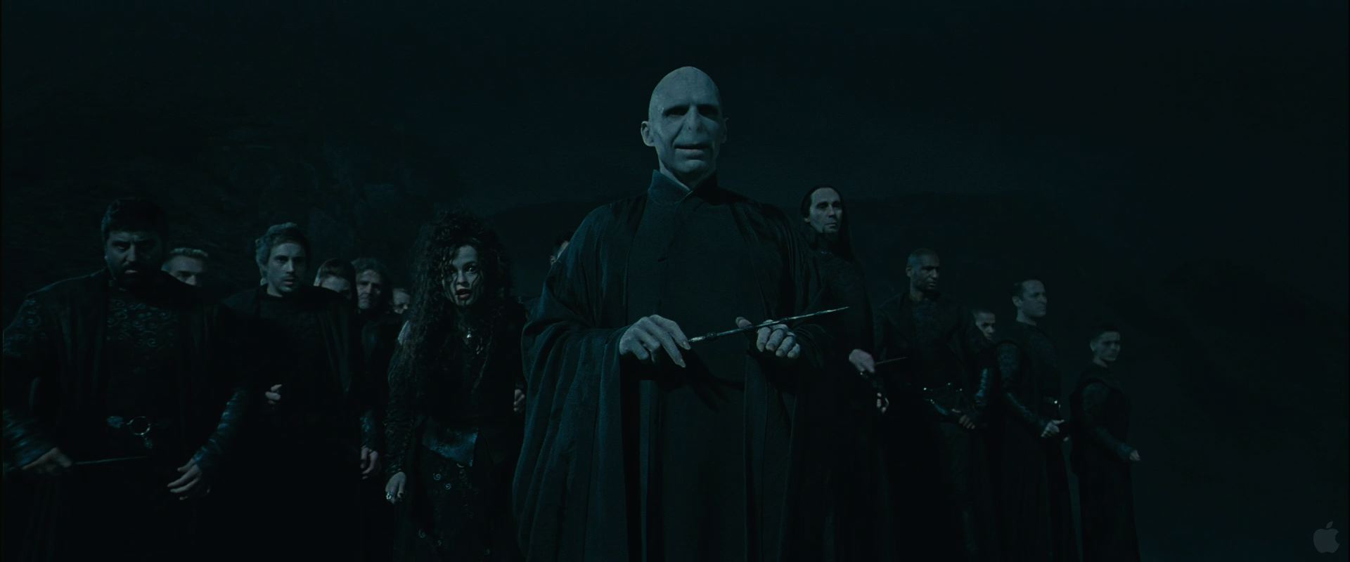 lord voldemort and followers from harry potter and the deathly
