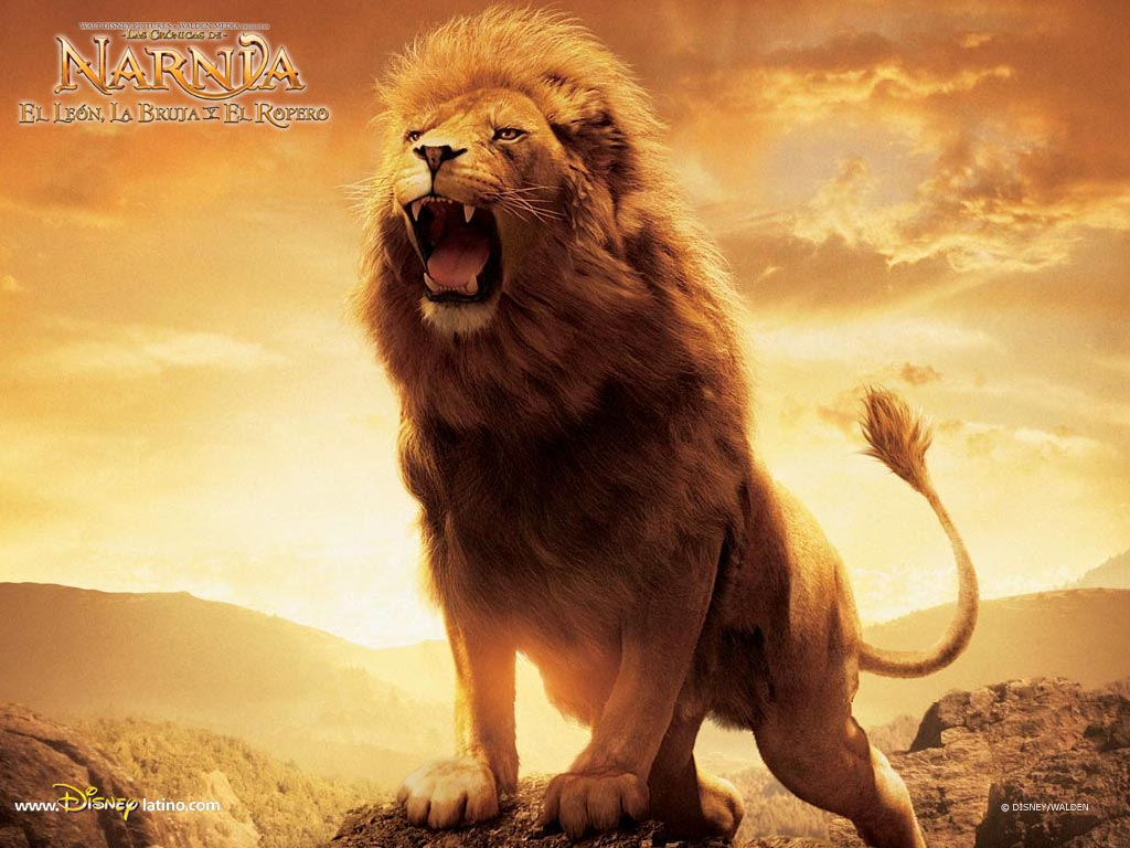 The Great Aslan the Lion from The Chronicles of Narnia wallpaper