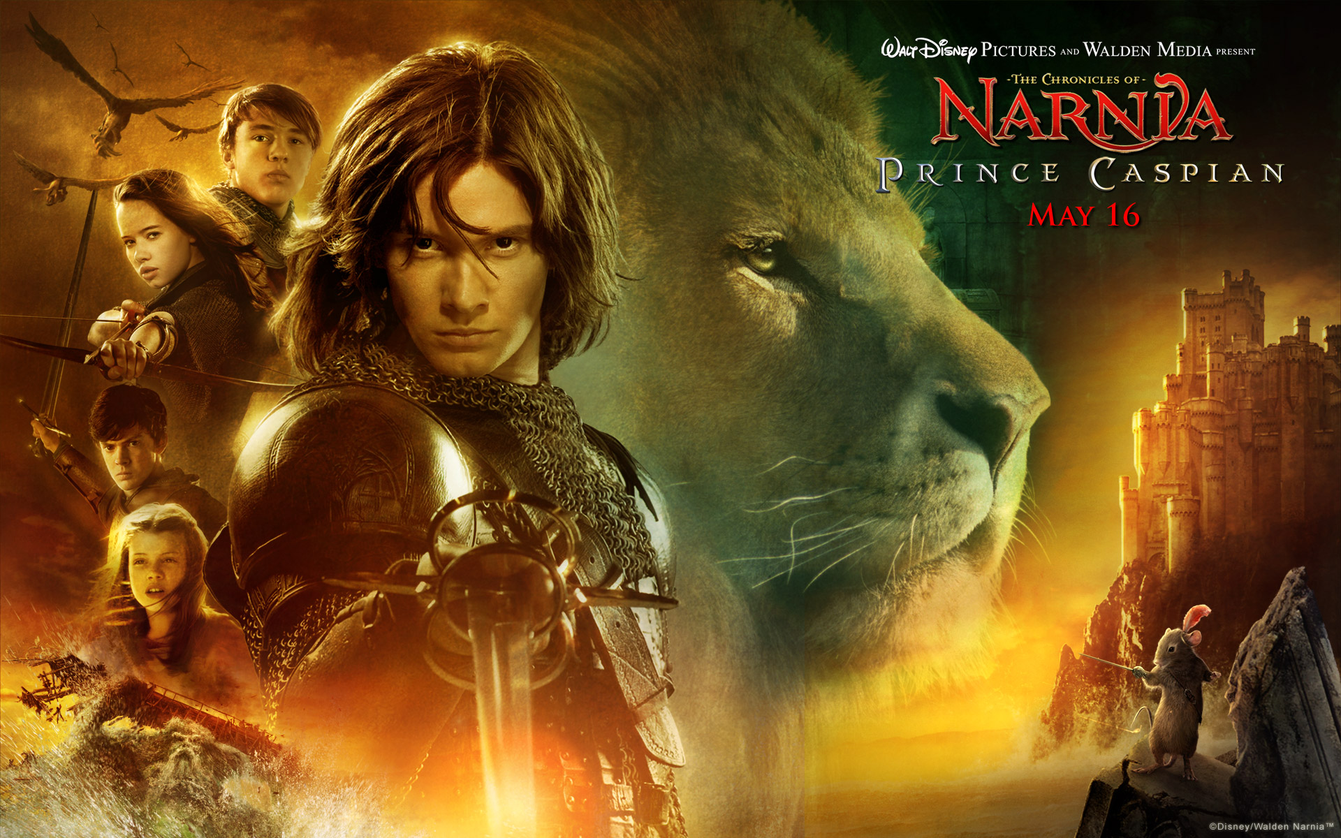 prince caspian from the chronicles of narnia movie desktop