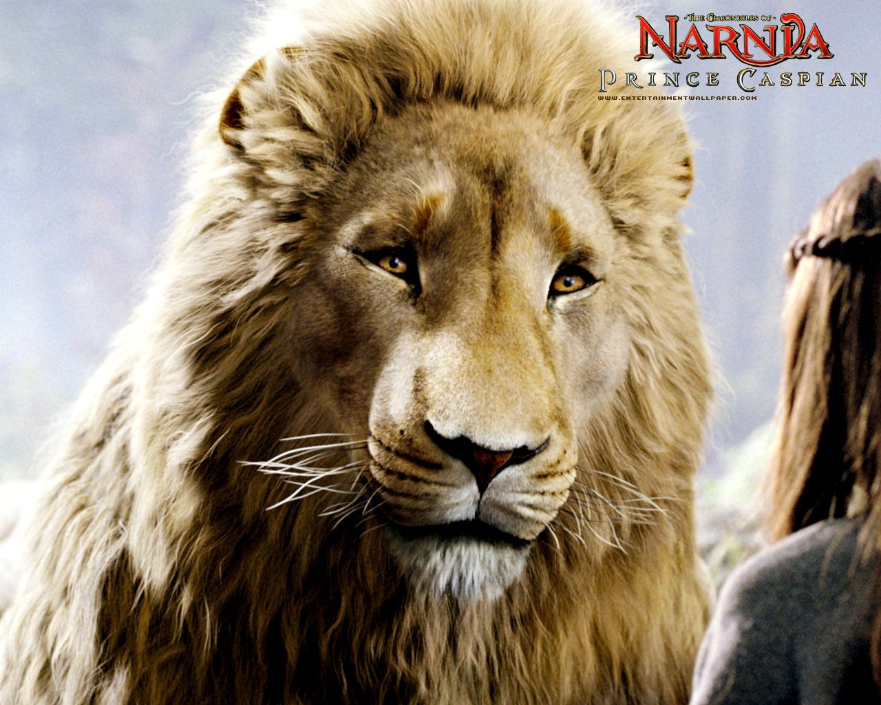 Aslan and Prince Caspian from Chronicles of Narnia Desktop Wallpaper for Narnia Aslan Wallpaper  54lyp