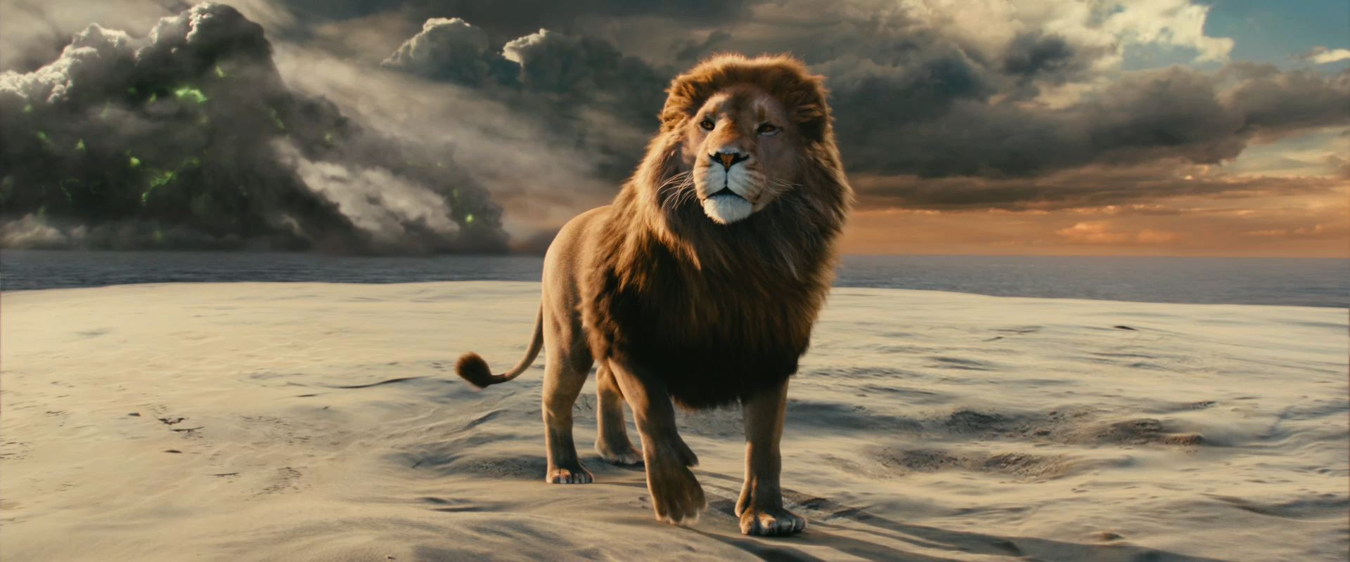 Aslan the Lion Chronicles of Narnia The Lion The Witch and the ...