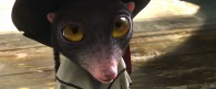 a cute kid from the movie Rango wallpaper