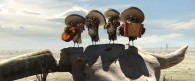 a group of owls forming a mariachi band from the CG animated movie Rango wallpaper