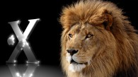 African Lion against the Apple Mac OS X logo in metallic finish