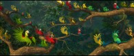 parrots in the forest from the animated movie Rio wallpaper picture