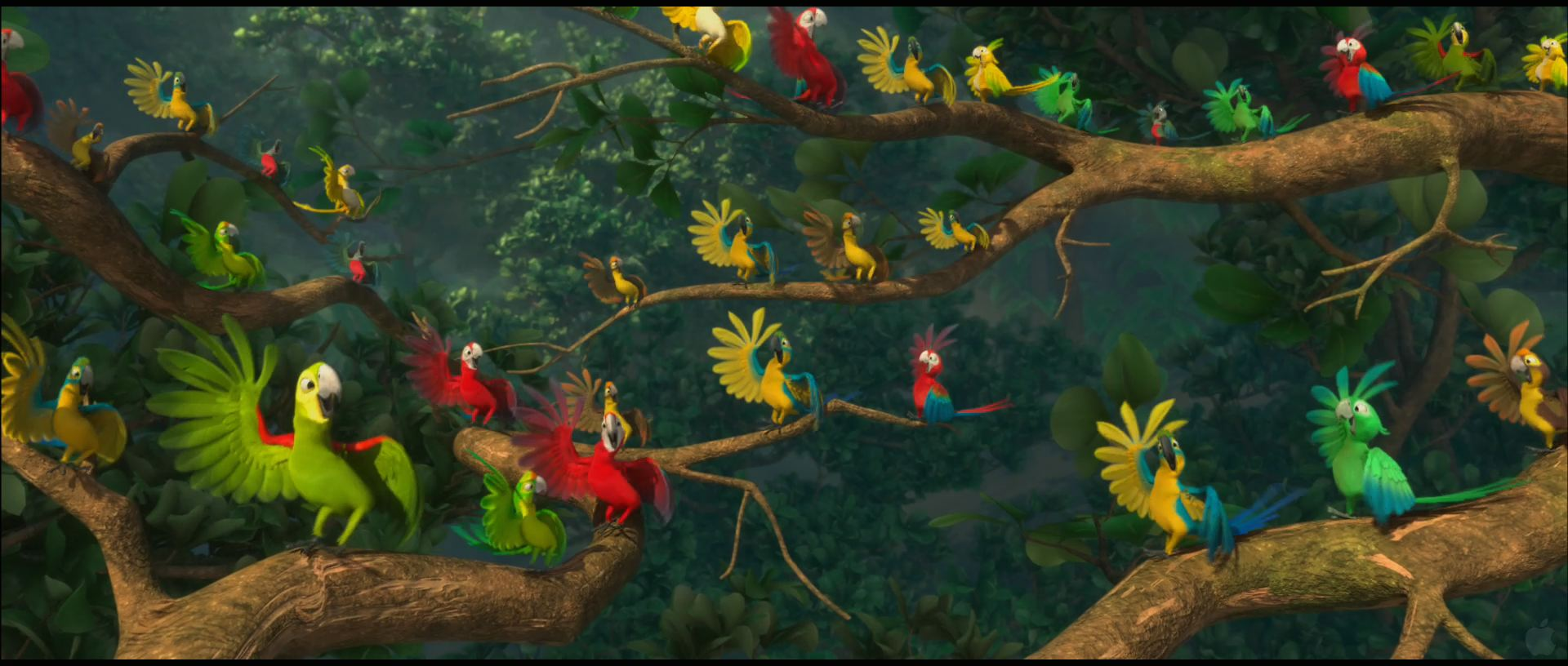 Parrots from rio desktop wallpaper parrots from rio wallpaper click picture for high resolution hd wallpaper voltagebd Choice Image