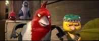 Pedro and Nico two birds from the animated movie Rio wallpaper picture