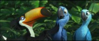 Rafael the toucan talks to Blu and Jewel from the animated movie Rio wallpaper picture