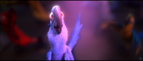 Blu the macaw from the animated movie Rio wallpaper picture