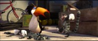 Rafael the toucan and a monkey from the animated movie Rio wallpaper picture