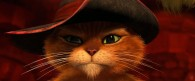 Puss in Boots closeup from the Dreamwork movie HD wallpaper