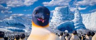 the dancing and singing penguins in the 2011 movie Happy Feet Two wallpaper picture
