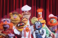 Group of all your favorite Muppet characters wallpaper