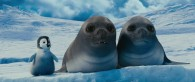 Erik the penguin with seals from Happy Feet Two movie wallpaper
