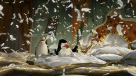 the penguins from Madagascar 3: Europe's Most Wanted wallpaper