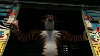 Vitali the tiger in Madagascar 3: Europe's Most Wanted wallpaper