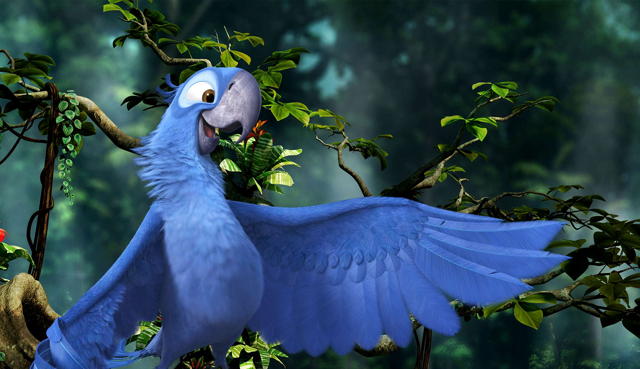 blu from rio 2 desktop wallpaper