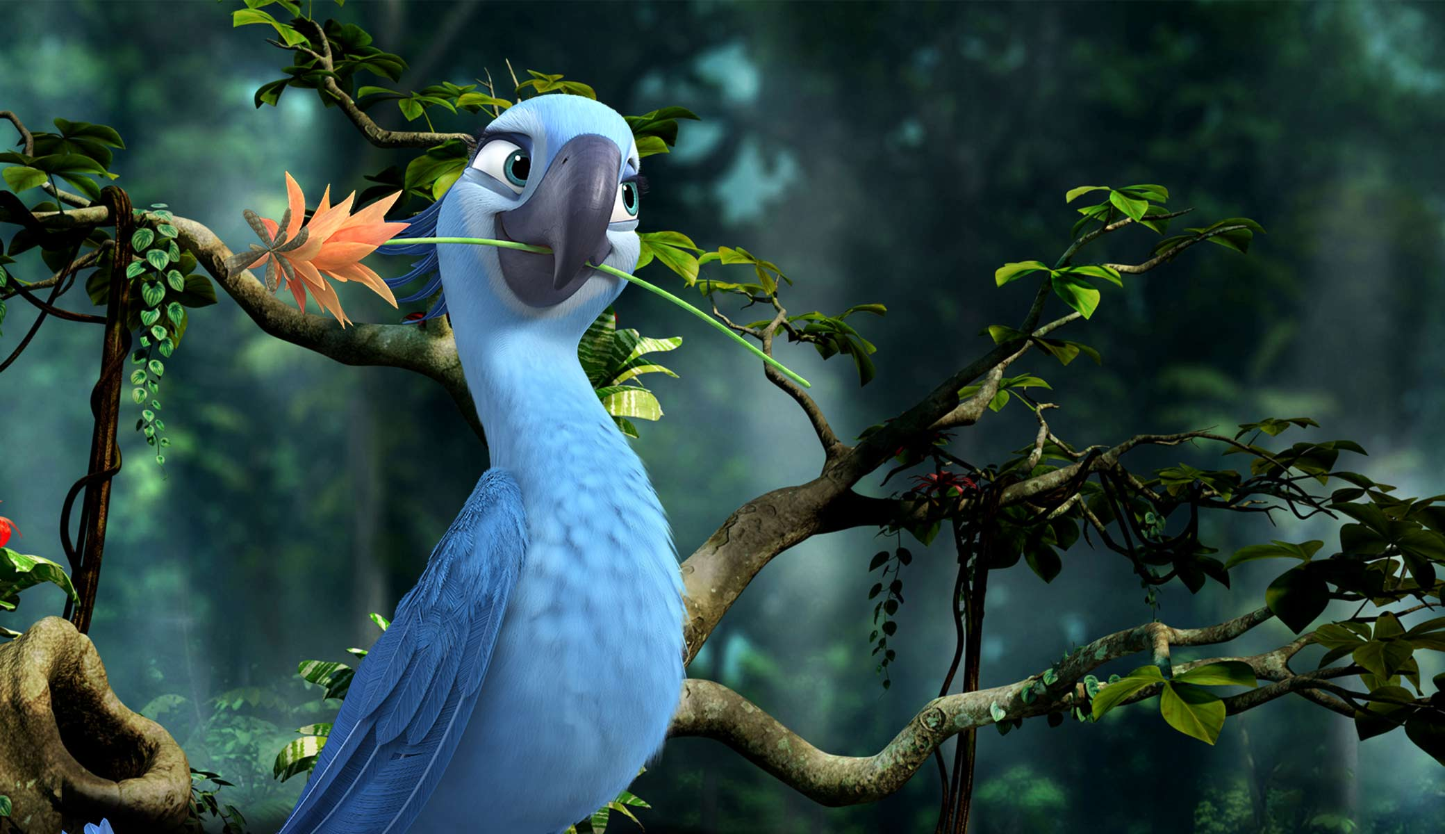 jewel from rio 2 desktop wallpaper