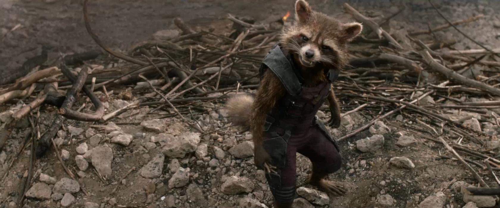 Rocket Raccoon From Marvels Guardians Of The Galaxy Wallpaper