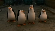 The Penguins of Madagascar: Skipper, Kowalski, Rico and Private movie wallpaper
