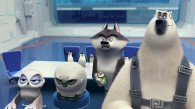 The North Wind: Classified, Eva, Short Fuse and Corporal from The Penguins of Madagascar movie wallpaper