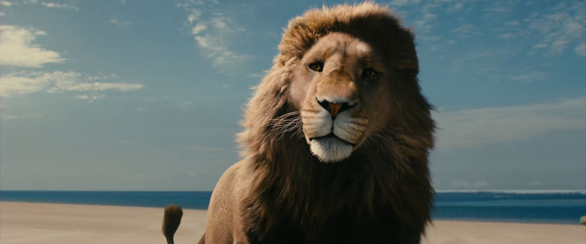 Aslan the Lion from the Movie The Chronicles of Narnia Voyage of the
